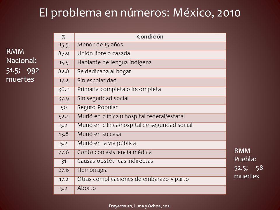 El problema en números: México, 2010 %Condición 15.5Menor de 15 años 87.9Unión libre o casada 15.5Hablante de lengua indígena 82.8Se dedicaba al hogar