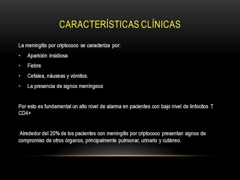 CARACTERÍSTICAS CLÍNICAS La meningitis por criptococo se caracteriza por: Aparición insidiosa Fiebre Cefalea, náuseas y vómitos. La presencia de signo