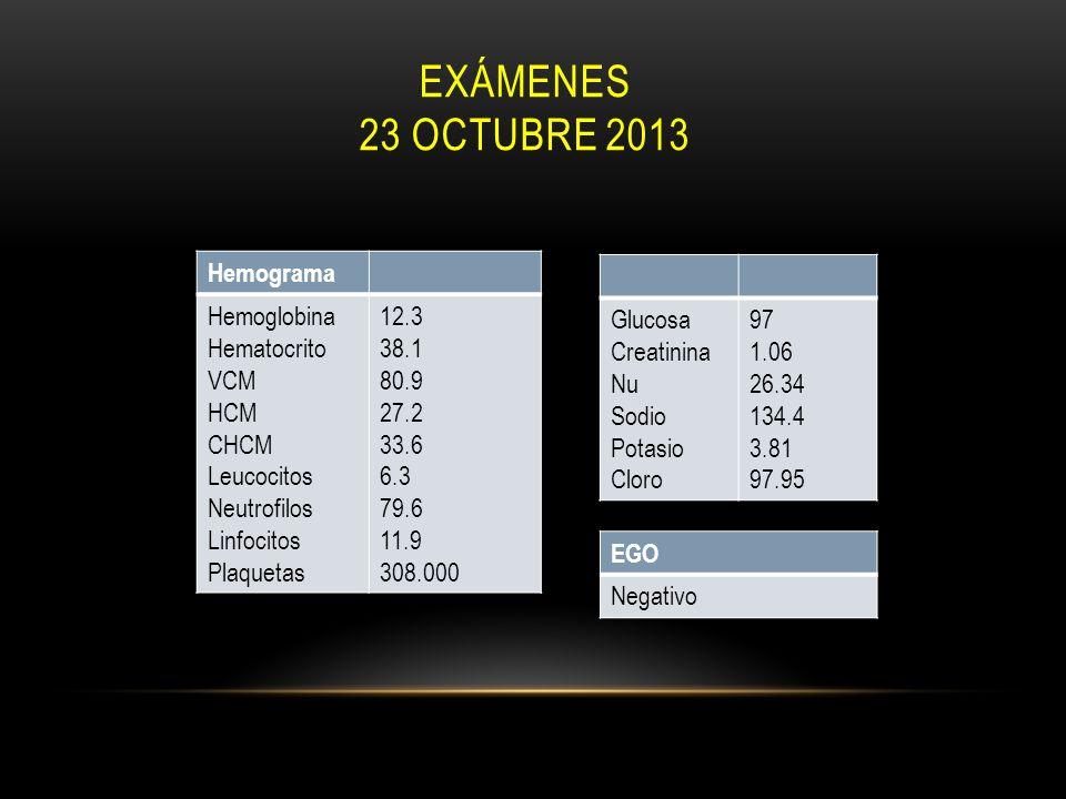 EXÁMENES 23 OCTUBRE 2013 Hemograma Hemoglobina Hematocrito VCM HCM CHCM Leucocitos Neutrofilos Linfocitos Plaquetas 12.3 38.1 80.9 27.2 33.6 6.3 79.6