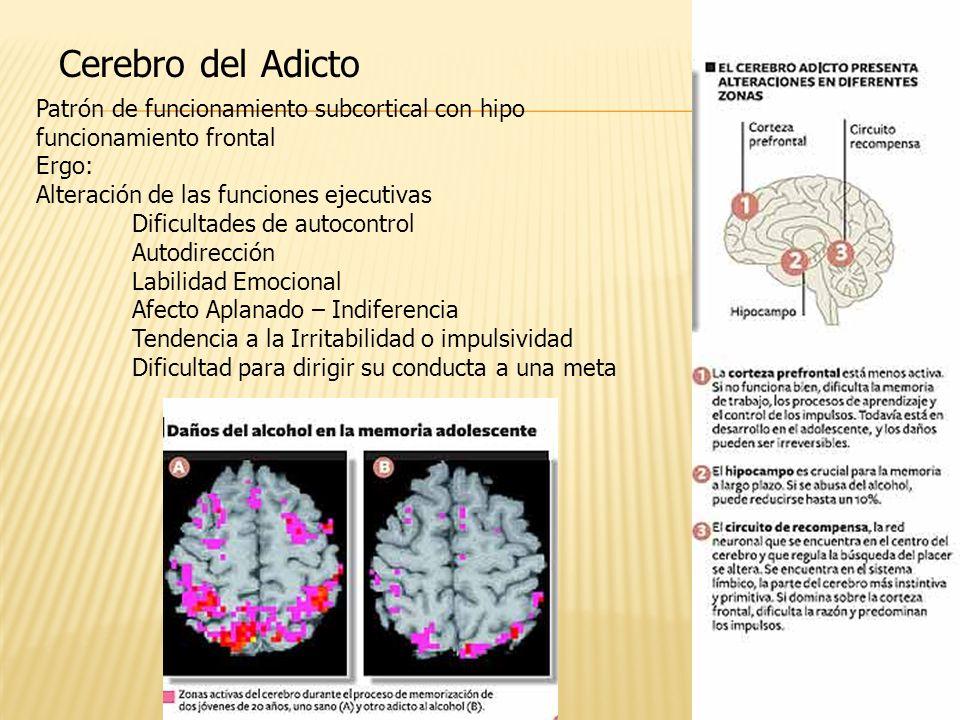 Cerebro del Adicto Patrón de funcionamiento subcortical con hipo funcionamiento frontal Ergo: Alteración de las funciones ejecutivas Dificultades de a