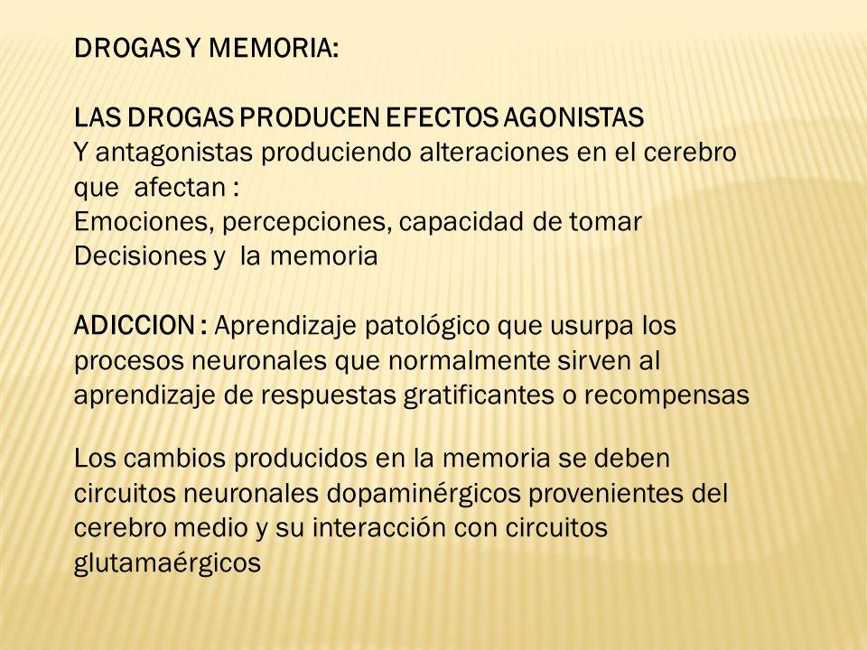 DROGAS Y MEMORIA: LAS DROGAS PRODUCEN EFECTOS AGONISTAS Y antagonistas produciendo alteraciones en el cerebro que afectan : Emociones, percepciones, c