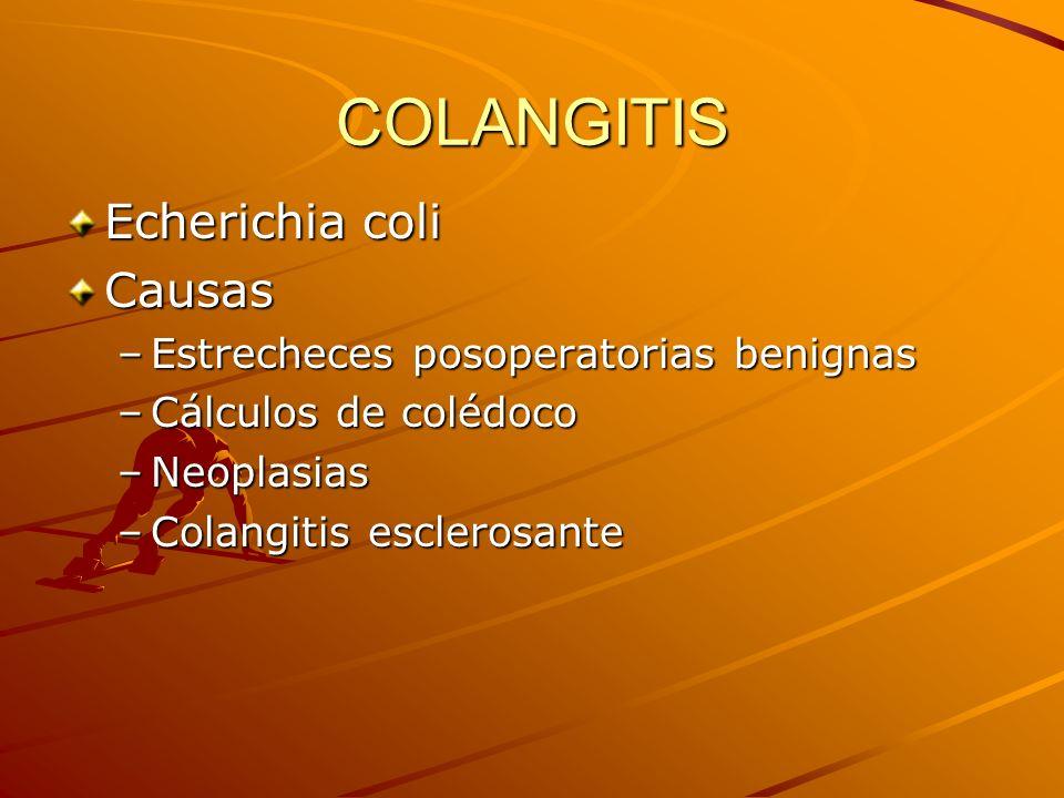 COLANGITIS Echerichia coli Causas –Estrecheces posoperatorias benignas –Cálculos de colédoco –Neoplasias –Colangitis esclerosante
