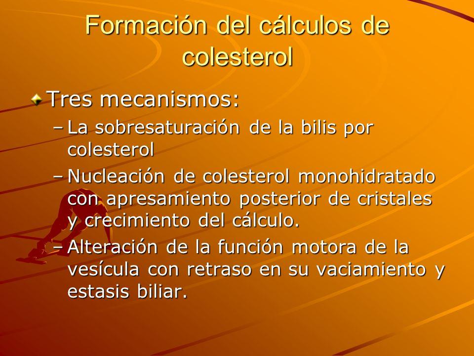 Formación del cálculos de colesterol Tres mecanismos: –La sobresaturación de la bilis por colesterol –Nucleación de colesterol monohidratado con apresamiento posterior de cristales y crecimiento del cálculo.