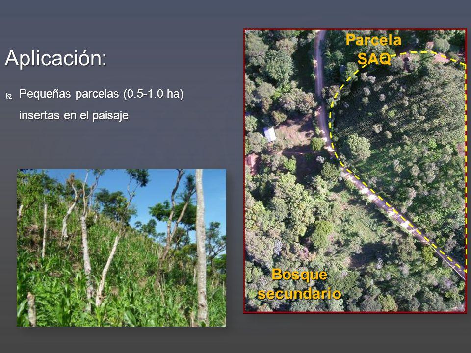 Aplicación: Pequeñas parcelas (0.5-1.0 ha) insertas en el paisaje Pequeñas parcelas (0.5-1.0 ha) insertas en el paisaje Parcela SAQ Bosque secundario