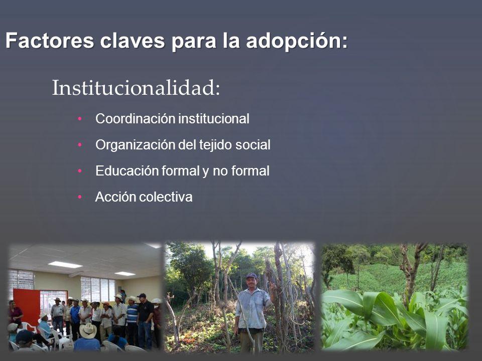 Factores claves para la adopción: Coordinación institucional Organización del tejido social Educación formal y no formal Acción colectiva Instituciona