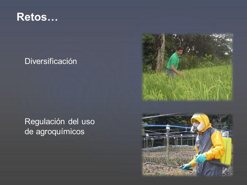 Retos… Diversificación Regulación del uso de agroquímicos