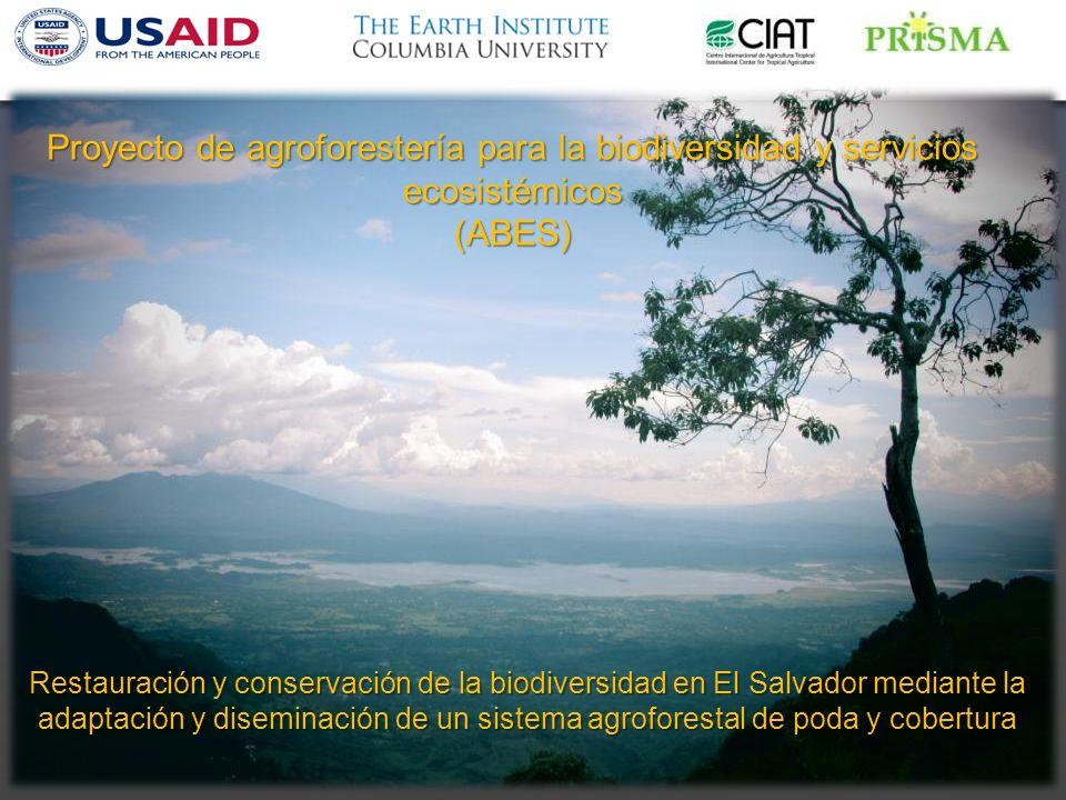 Proyecto de agroforestería para la biodiversidad y servicios ecosistémicos (ABES) Restauración y conservación de la biodiversidad en El Salvador mediante la adaptación y diseminación de un sistema agroforestal de poda y cobertura