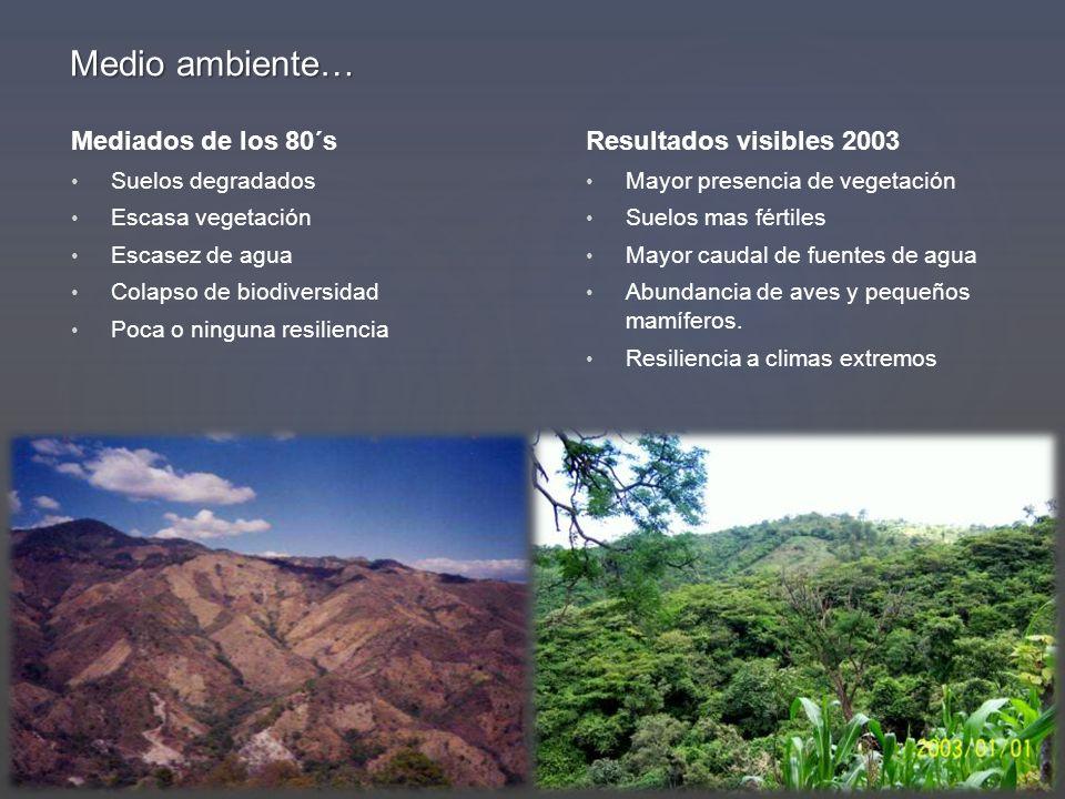 Mediados de los 80´s Suelos degradados Escasa vegetación Escasez de agua Colapso de biodiversidad Poca o ninguna resiliencia Resultados visibles 2003