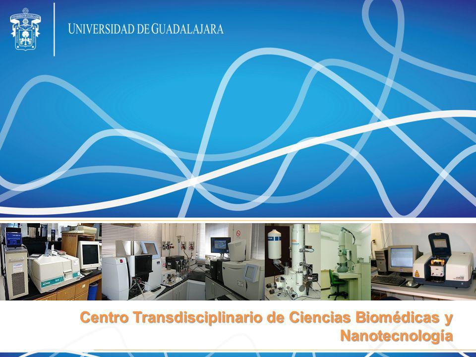 Crear el Centro Transdisciplinario de Ciencias Biomédicas y Nanotecnología para brindar servicio de caracterización y análisis de muestras de origen biológico, industrial y del ambiente, para el desarrollo de la investigación de frontera que realizan por lo menos 200 investigadores en la red universitaria.