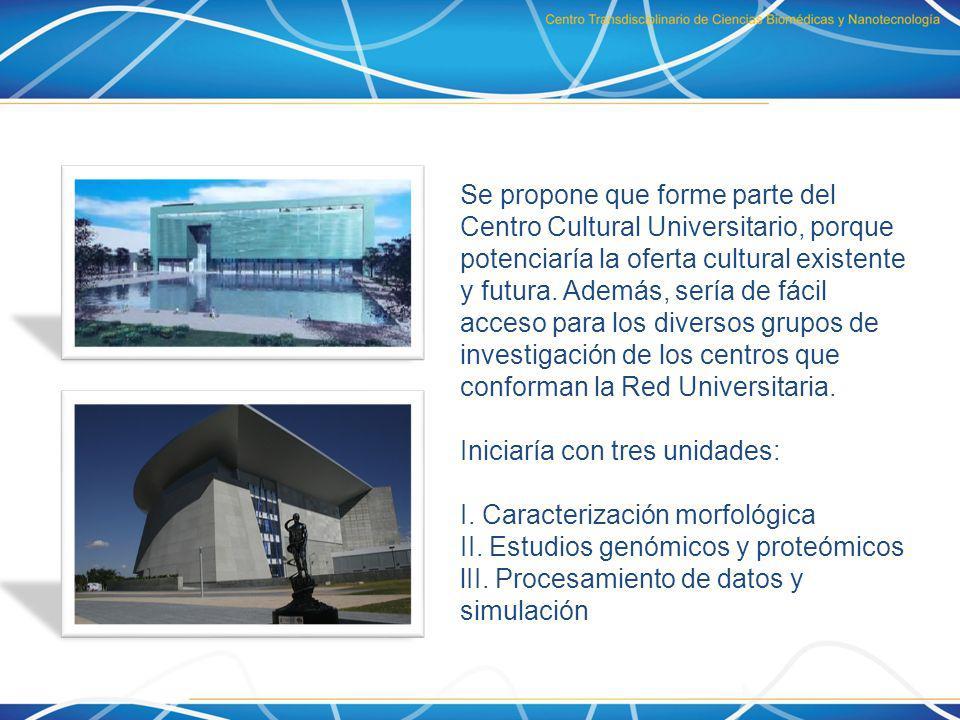 Se propone que forme parte del Centro Cultural Universitario, porque potenciaría la oferta cultural existente y futura. Además, sería de fácil acceso