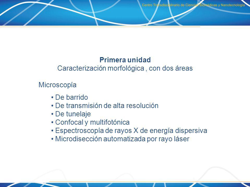 Primera unidad Caracterización morfológica, con dos áreas Microscopía De barrido De transmisión de alta resolución De tunelaje Confocal y multifotónic