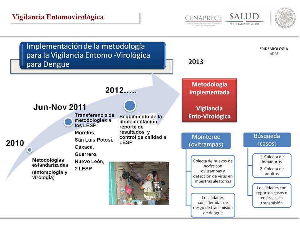 2013 Vigilancia Entomovirológica