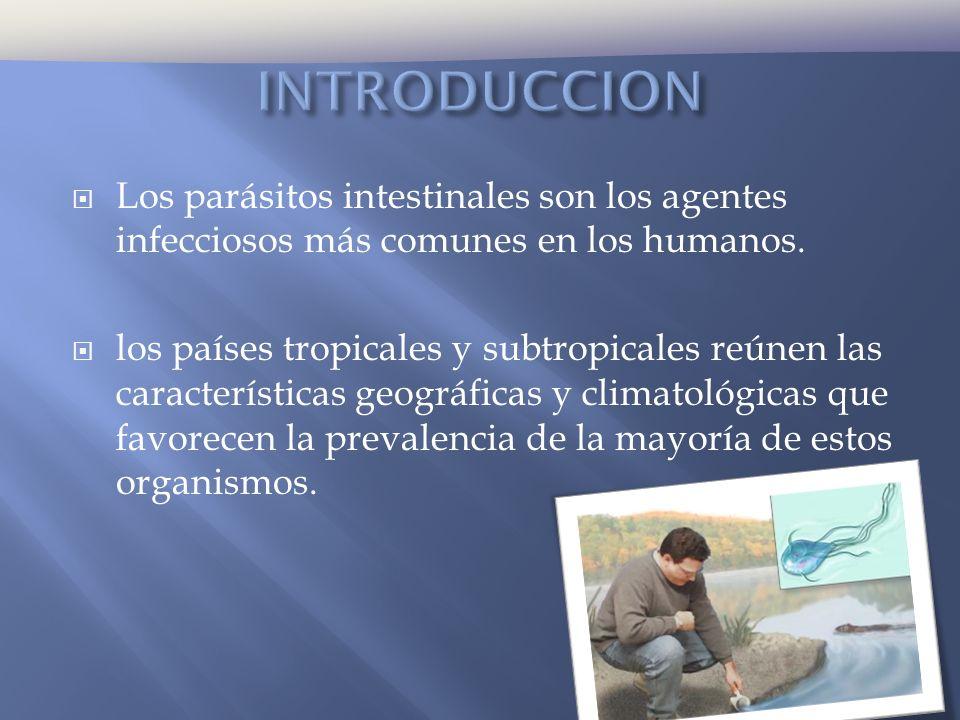 Los parásitos intestinales son los agentes infecciosos más comunes en los humanos. los países tropicales y subtropicales reúnen las características ge
