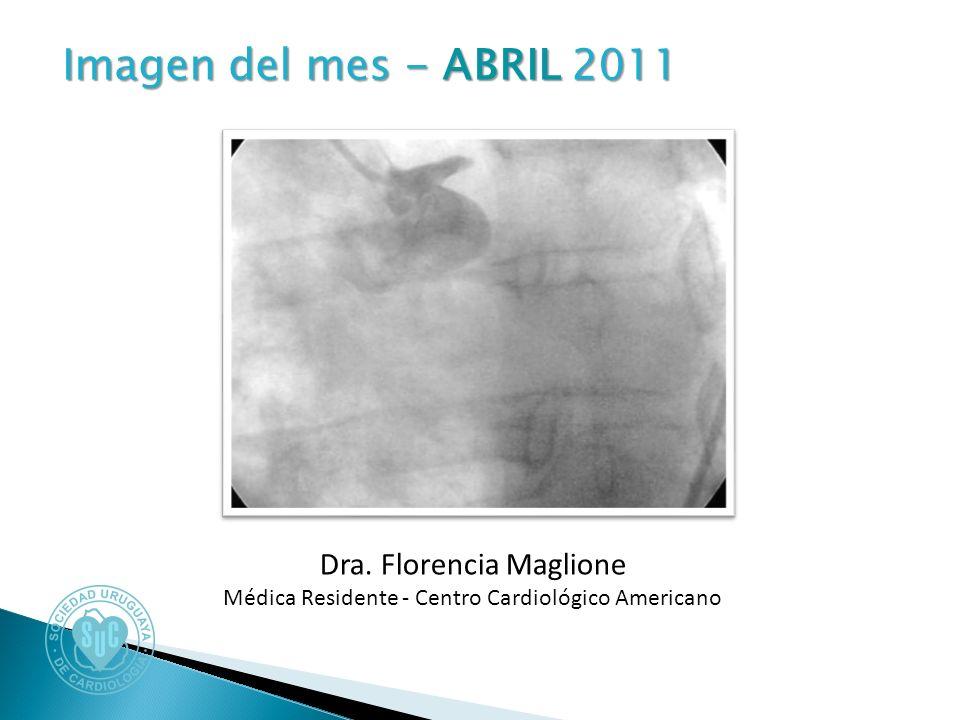 Imagen del mes - ABRIL 2011 Imagen del mes - ABRIL 2011 Dra.