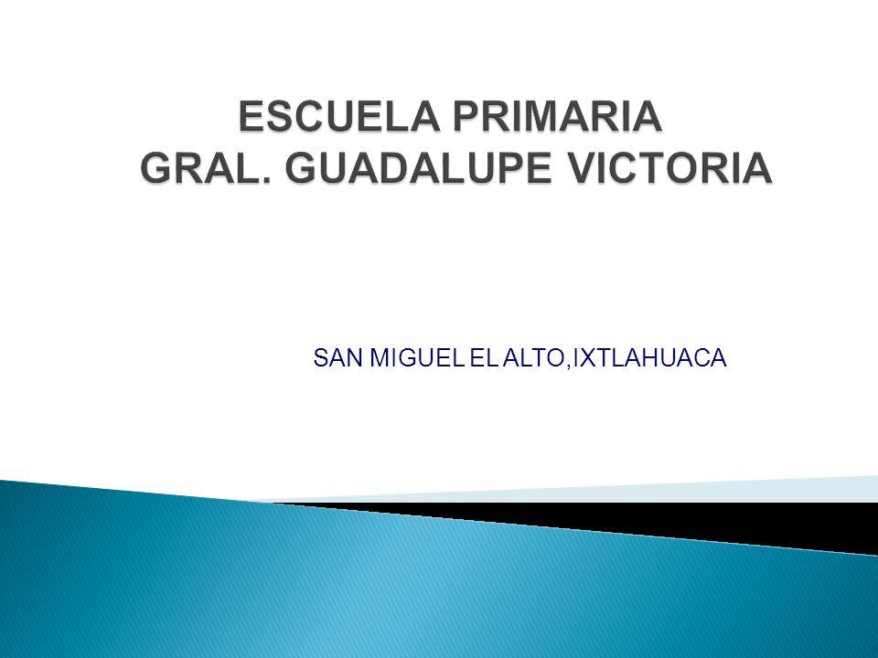 SAN MIGUEL EL ALTO,IXTLAHUACA