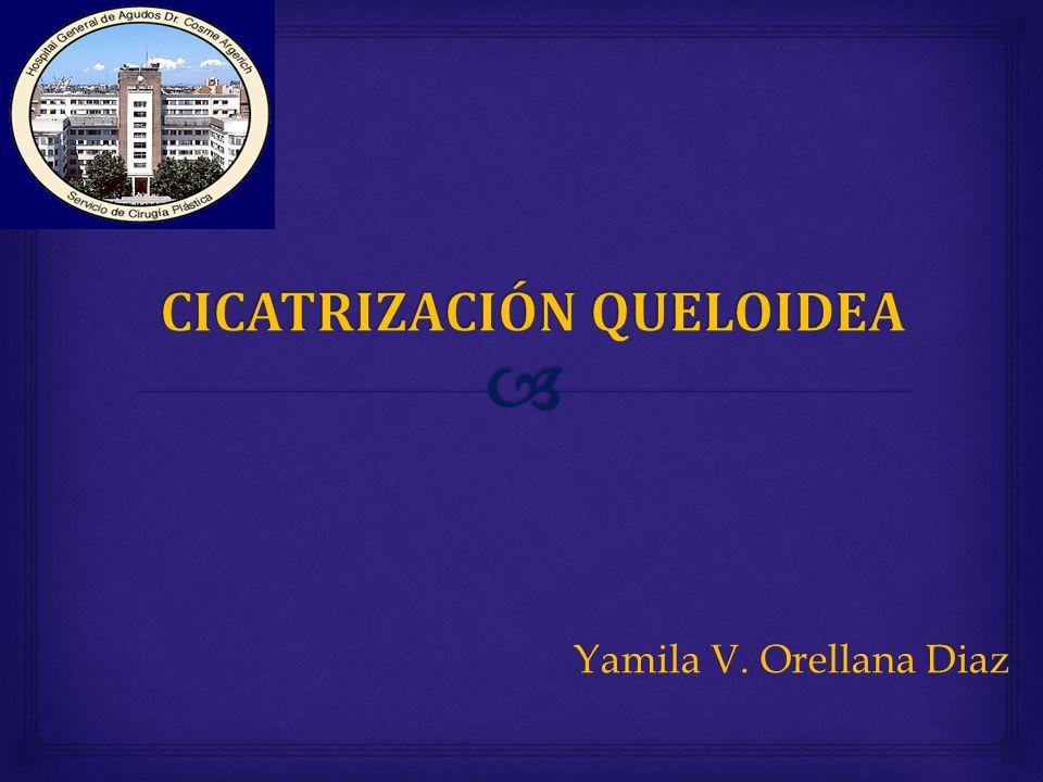 Yamila V. Orellana Diaz