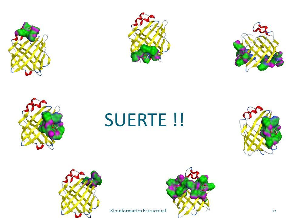 SUERTE !! Bioinformática Estructural12