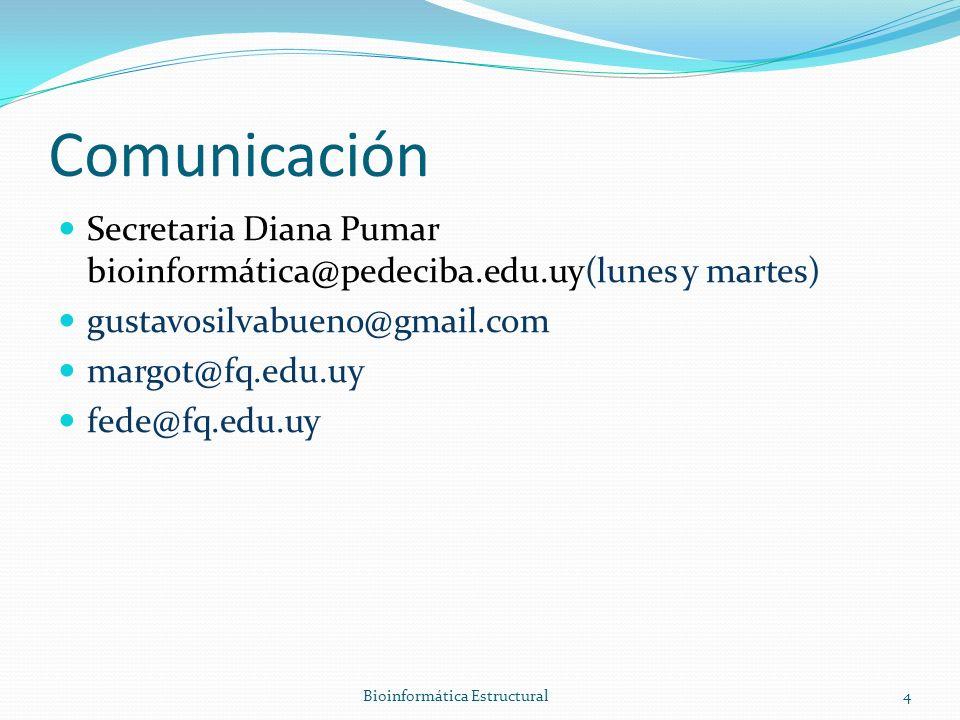 Comunicación Secretaria Diana Pumar bioinformática@pedeciba.edu.uy(lunes y martes) gustavosilvabueno@gmail.com margot@fq.edu.uy fede@fq.edu.uy Bioinformática Estructural4