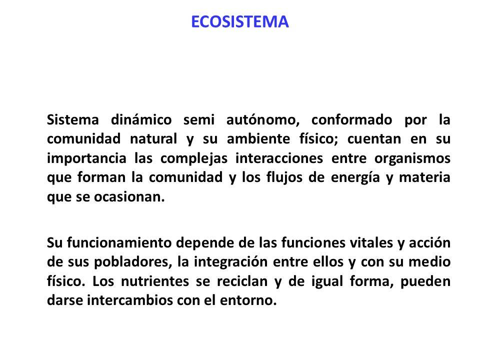 ECOSISTEMA Sistema dinámico semi autónomo, conformado por la comunidad natural y su ambiente físico; cuentan en su importancia las complejas interacci