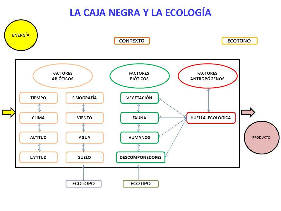 LA CAJA NEGRA Y LA ECOLOGÍA ENERGÍA TIEMPO SUELO ALTITUD VIENTO FISIOGRAFÍA AGUA LATITUD CLIMA FACTORES ABIÓTICOS FACTORES BIÓTICOS VEGETACIÓN FAUNA H