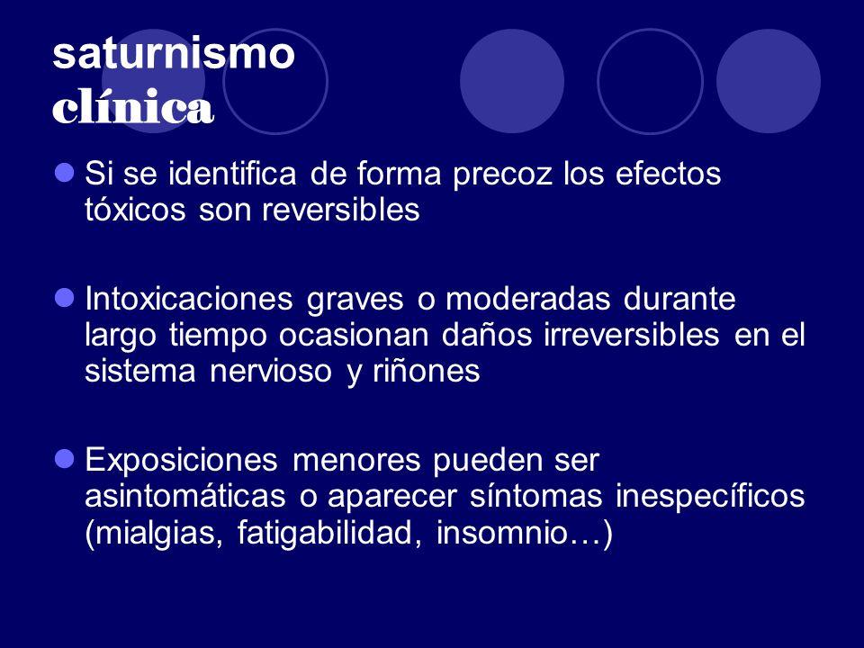 saturnismo clínica Si se identifica de forma precoz los efectos tóxicos son reversibles Intoxicaciones graves o moderadas durante largo tiempo ocasion