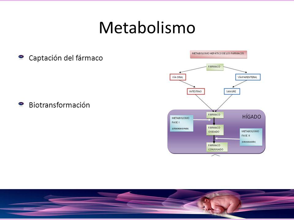 Metabolismo Captación del fármaco Biotransformación