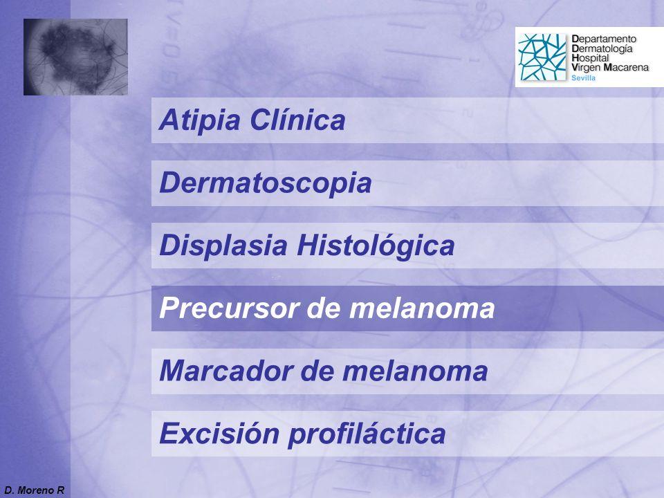 Precursor de melanoma Marcador de melanoma Atipia Clínica Displasia Histológica Excisión profiláctica Dermatoscopia D.
