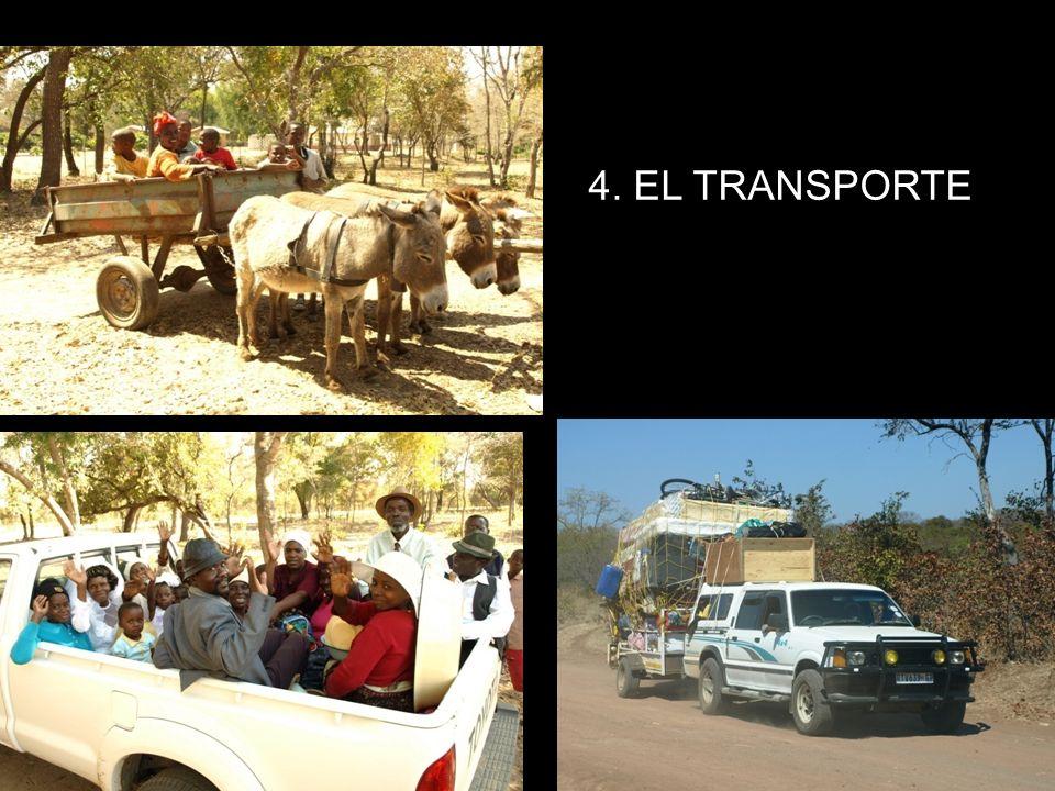 4. EL TRANSPORTE