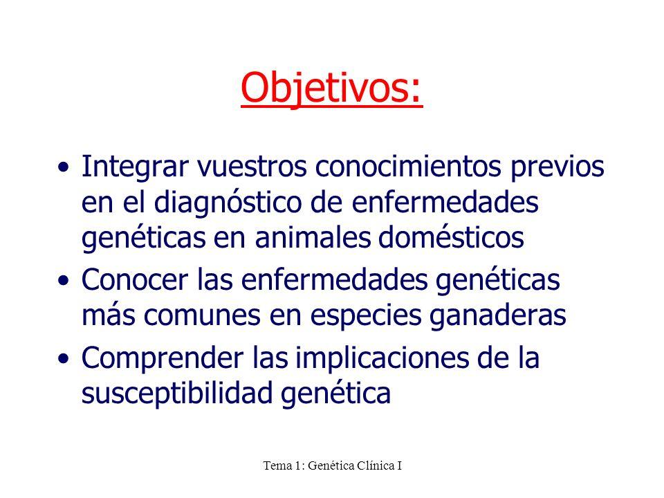Tema 1: Genética Clínica I Objetivos: Integrar vuestros conocimientos previos en el diagnóstico de enfermedades genéticas en animales domésticos Conoc