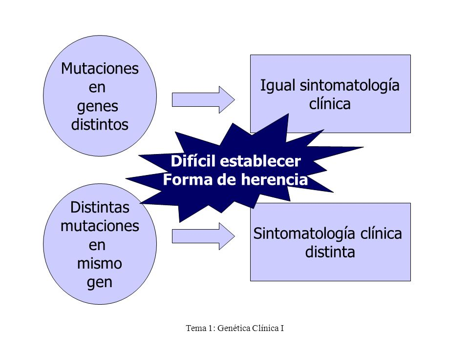 Tema 1: Genética Clínica I Mutaciones en genes distintos Igual sintomatología clínica Distintas mutaciones en mismo gen Sintomatología clínica distint