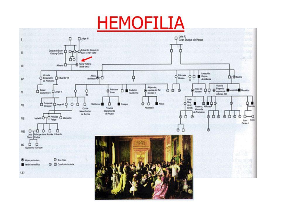 Tema 1: Genética Clínica I HEMOFILIA
