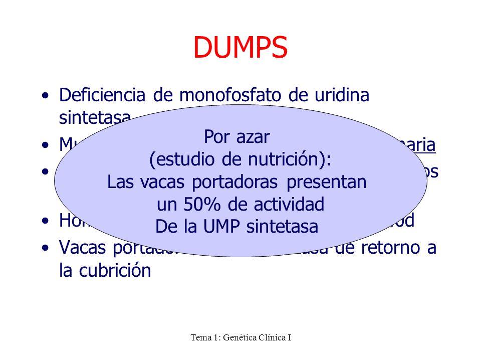 Tema 1: Genética Clínica I DUMPS Deficiencia de monofosfato de uridina sintetasa Mutación sin sentido letal en fase embrionaria La enzima UMP intervie