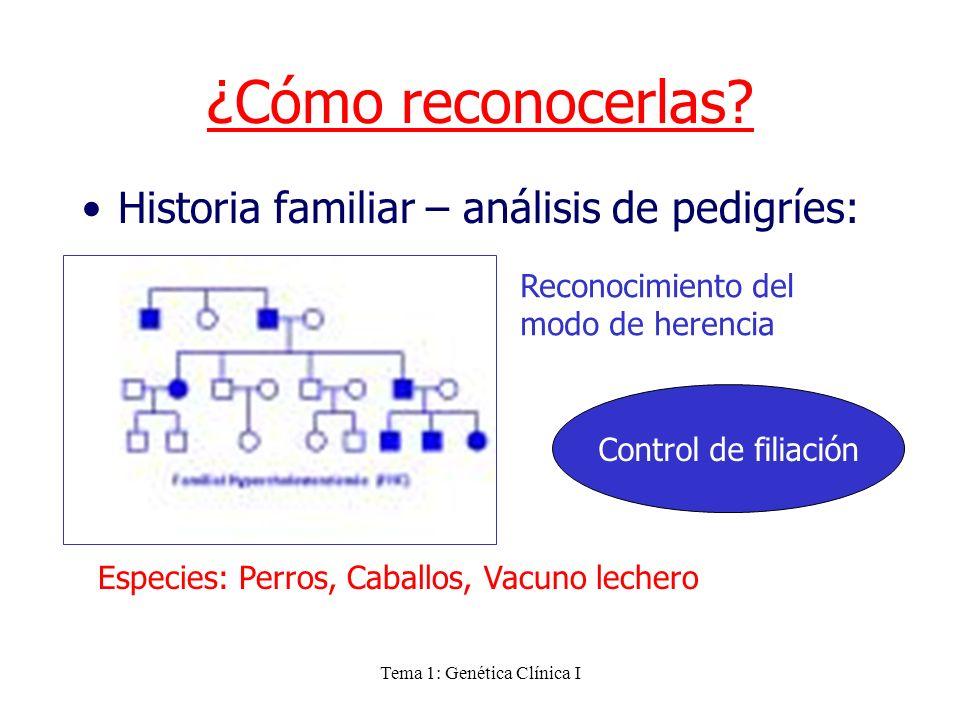 Tema 1: Genética Clínica I ¿Cómo reconocerlas? Historia familiar – análisis de pedigríes: Especies: Perros, Caballos, Vacuno lechero Reconocimiento de