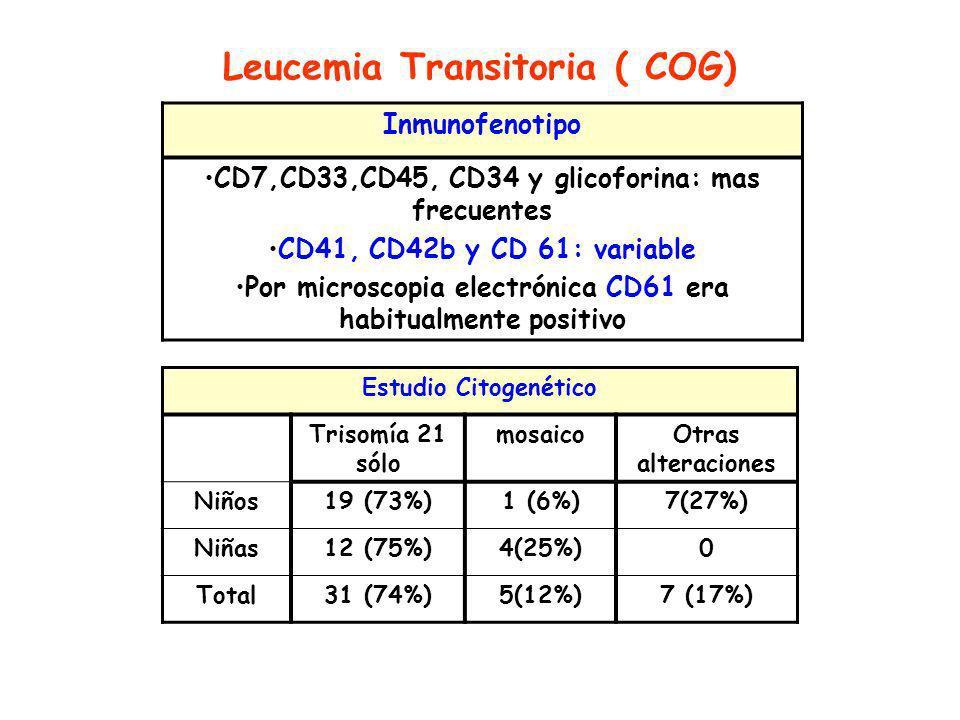 Leucemia Transitoria ( COG) Inmunofenotipo CD7,CD33,CD45, CD34 y glicoforina: mas frecuentes CD41, CD42b y CD 61: variable Por microscopia electrónica CD61 era habitualmente positivo Estudio Citogenético Trisomía 21 sólo mosaicoOtras alteraciones Niños19 (73%)1 (6%)7(27%) Niñas12 (75%)4(25%)0 Total31 (74%)5(12%)7 (17%)