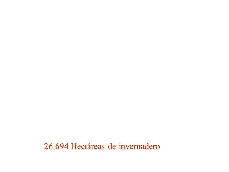 26.694 Hectáreas de invernadero