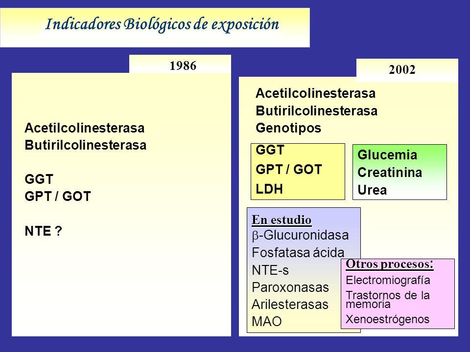 Indicadores Biológicos de exposición 1986 2002 En estudio -Glucuronidasa Fosfatasa ácida NTE-s Paroxonasas Arilesterasas MAO GGT GPT / GOT LDH Acetilc