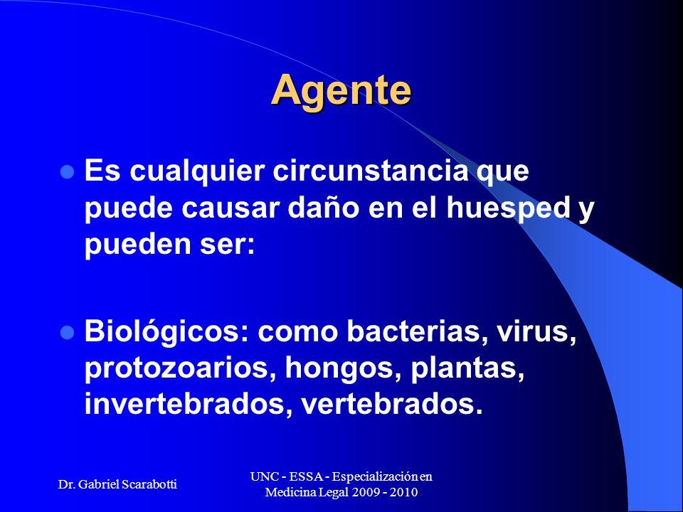 Dr. Gabriel Scarabotti UNC - ESSA - Especialización en Medicina Legal 2009 - 2010 Agente Es cualquier circunstancia que puede causar daño en el huespe