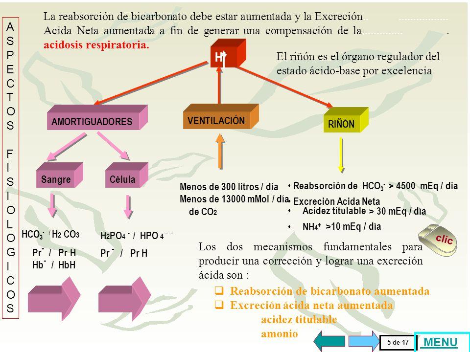 Cuando la disociación de los amortiguadores no se acompaña con una simultánea producción ácida aumentada o una reabsorción renal de H +, su capacidad