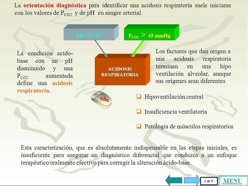 ORIENTACION DIAGNOSTICA. HIPOVENTILACION CENTRAL INSUFICIENCIA VENTILATORIA MUSCULOS RESPIRATORIOS HIPOVENTILACION CENTRAL INSUFICIENCIA VENTILATORIA