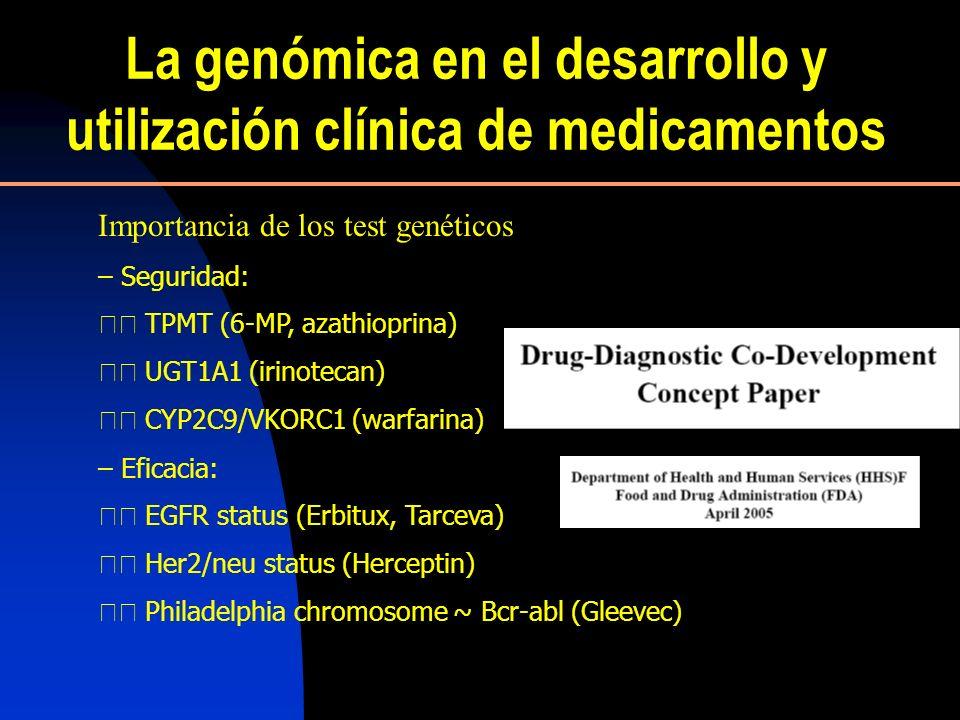 La genómica en el desarrollo y utilización clínica de medicamentos Aplicación para mejorar la efectividad clínica Selección de pacientes basada en la información genética Importancia de los test genéticos – Seguridad: TPMT (6-MP, azathioprina) UGT1A1 (irinotecan) CYP2C9/VKORC1 (warfarina) – Eficacia: EGFR status (Erbitux, Tarceva) Her2/neu status (Herceptin) Philadelphia chromosome ~ Bcr-abl (Gleevec)