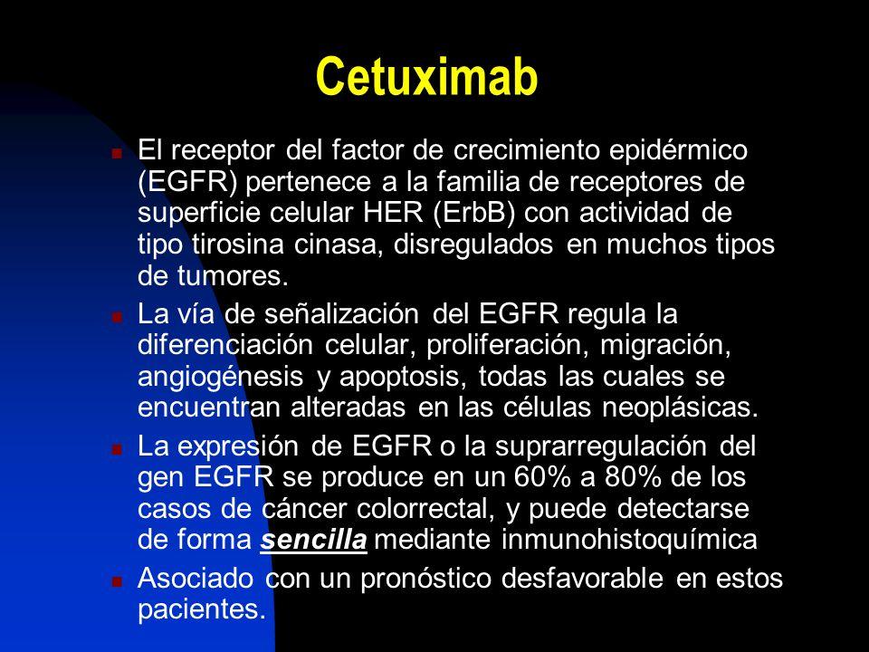Cetuximab El receptor del factor de crecimiento epidérmico (EGFR) pertenece a la familia de receptores de superficie celular HER (ErbB) con actividad de tipo tirosina cinasa, disregulados en muchos tipos de tumores.