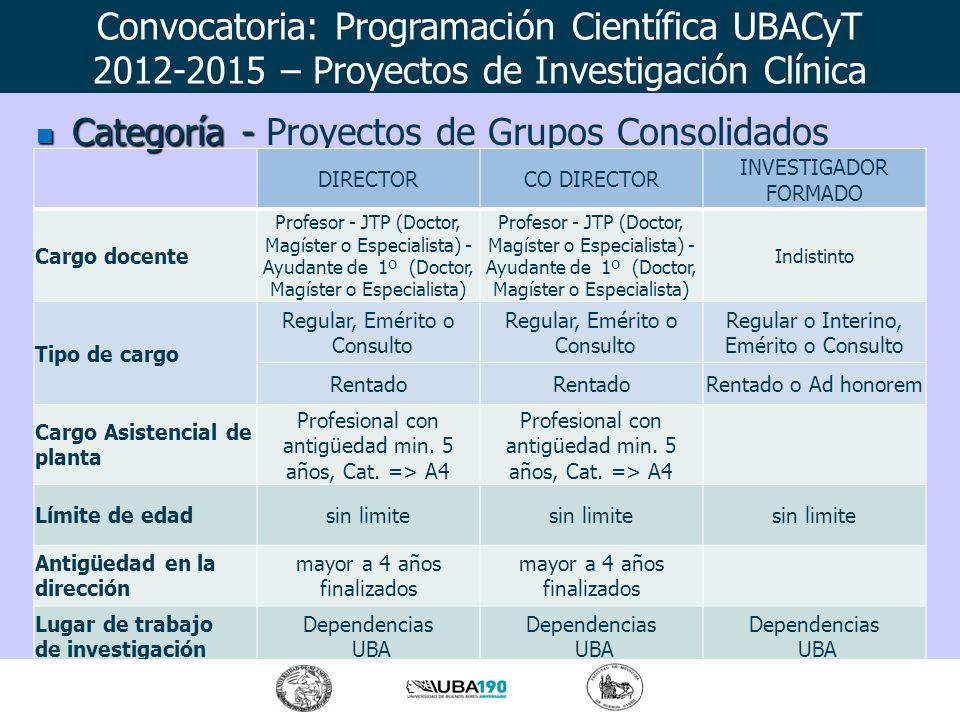 Categoría - Categoría - Proyectos de Grupos Consolidados DIRECTORCO DIRECTOR INVESTIGADOR FORMADO Cargo docente Profesor - JTP (Doctor, Magíster o Esp