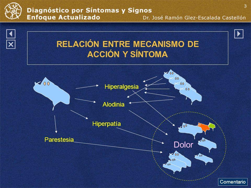 Hiperalgesia Alodinia Hiperpatía Parestesia Dolor RELACIÓN ENTRE MECANISMO DE ACCIÓN Y SÍNTOMA Comentario 3