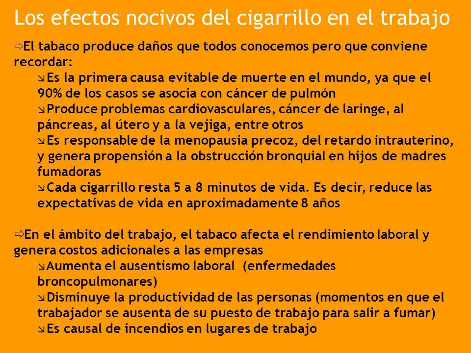 Los efectos nocivos del cigarrillo en el trabajo El tabaco produce daños que todos conocemos pero que conviene recordar: Es la primera causa evitable