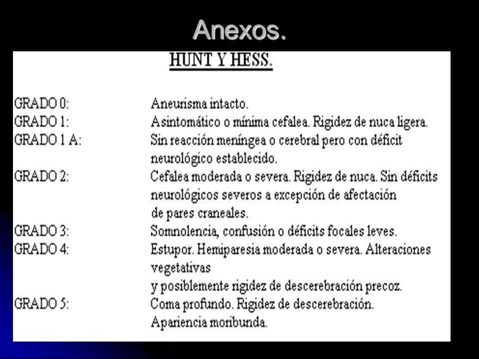 Anexos.