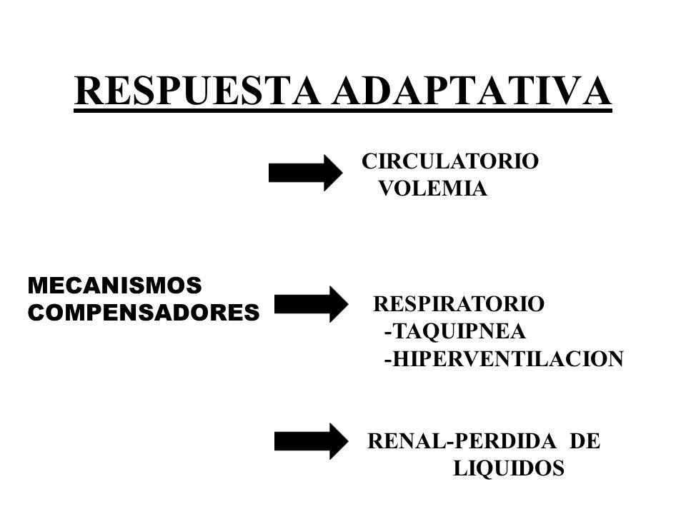 RESPUESTA ADAPTATIVA MECANISMOS COMPENSADORES CIRCULATORIO VOLEMIA RESPIRATORIO -TAQUIPNEA -HIPERVENTILACION RENAL-PERDIDA DE LIQUIDOS