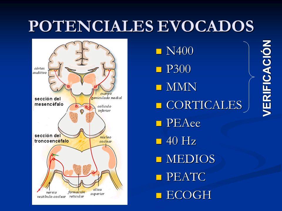 POTENCIALES EVOCADOS N400 N400 P300 P300 MMN MMN CORTICALES CORTICALES PEAee PEAee 40 Hz 40 Hz MEDIOS MEDIOS PEATC PEATC ECOGH ECOGH VERIFICACIÓN