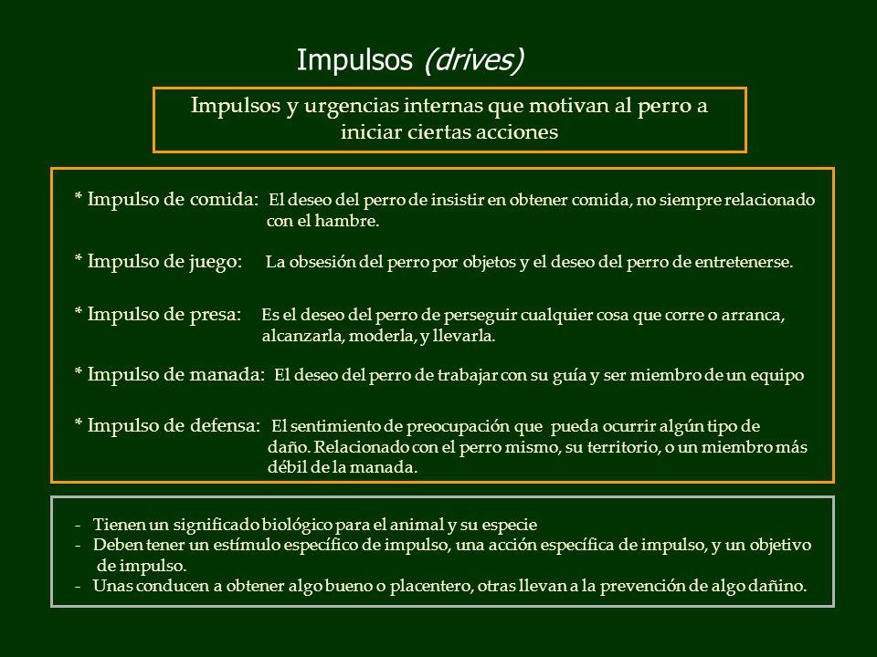Impulsos (drives) * Impulso de comida: El deseo del perro de insistir en obtener comida, no siempre relacionado con el hambre.