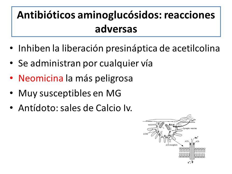 Antibióticos aminoglucósidos: reacciones adversas Inhiben la liberación presináptica de acetilcolina Se administran por cualquier vía Neomicina la más