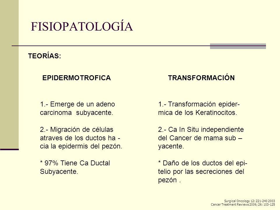 FISIOPATOLOGÍA TEORÍAS: EPIDERMOTROFICA 1.- Emerge de un adeno carcinoma subyacente. 2.- Migración de células atraves de los ductos ha - cia la epider